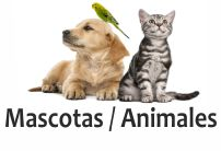 mascotas veterinarias comida para animales en tenerife adeje arona santa cruz la laguan animal perro gato