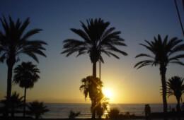 Mejores playas de Tenerife adeje