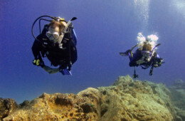 Fotos de Tenerife de buceo y marinas