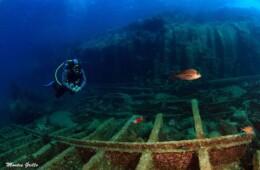 fotos debajo del mar en Tenerife buceo