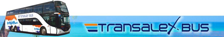 tansalex bus tansalexbus bus transalex tans alex guaguas tenerife sur norte islas canarias adeje arona