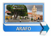 municipio de arafo tenerife islas canarias