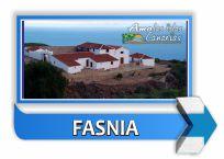 municipio de fasnia tenerife islas canarias