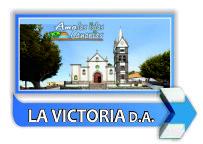 municipio de victoria de acertejo tenerife islas canarias arbol longevo