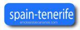 link spain-tenerife portal informacion turistica