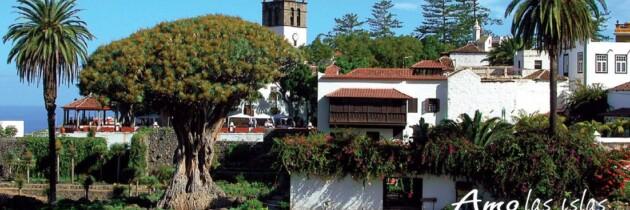 arbol longevo de Icod de los Vinos Tenerife Islas Canarias