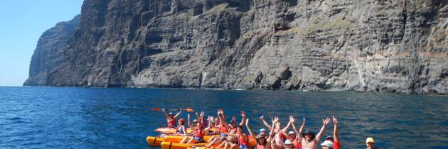 Avistamiento de ballenas en Tenerife Islas Canarias