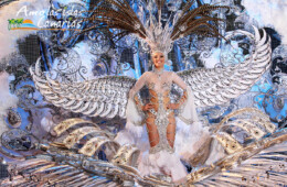 fotos de los carnavales de santa cruz de tenerife vestidos comparsas trajes ornamentales islas canarias