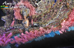 imagenes de los carnavales de santa cruz de tenerife trajes de candidatas a reina carrozas islas canarias españa