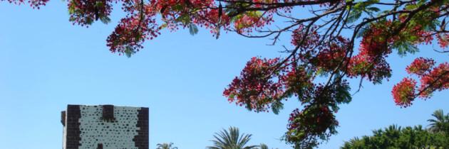 parque torre del conde en san sebastian de la gomera fotos de las islas canarias españa